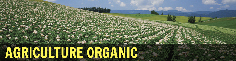 Agriculture Organic